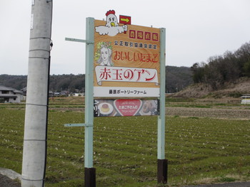 産みたてたまごのドーナツ☆藤原ポートリーファーム