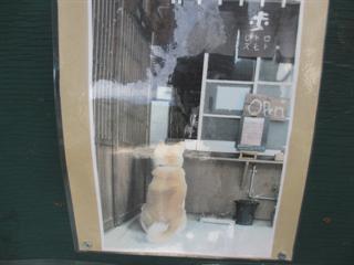 昭和レトロな大判焼き専門店☆あずき堂☆