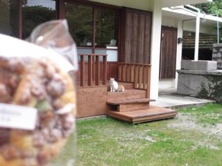 森の中にたたずむ小さな菓子店☆Himbeere菓子店(ヒムベーレ)☆