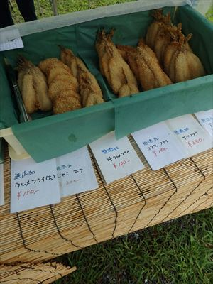 高知オーガニックマーケット~池公園の土曜市~