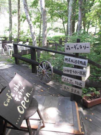 蓼科白樺高原☆森のカフェでランチ♪