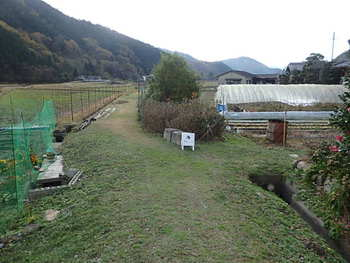緑に囲まれた隠れ家カフェ〜ヤドルノ