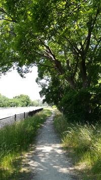 服部緑地公園へサイクリング。