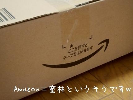 Amazonでのお買い物。