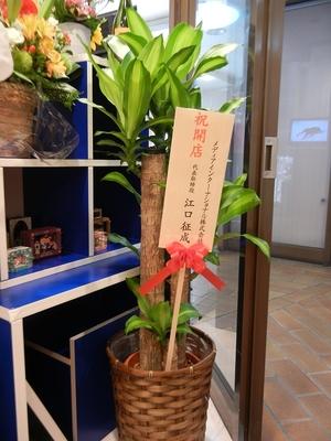 開店祝いの御花