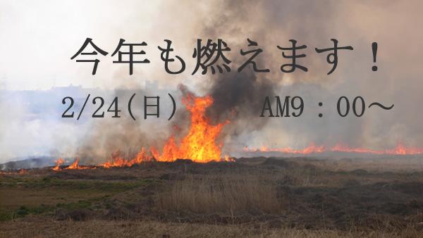 鵜殿のヨシ原焼き