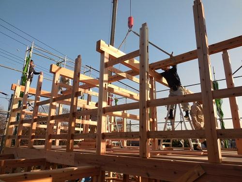 木造伝統工法の見学に行ってきました