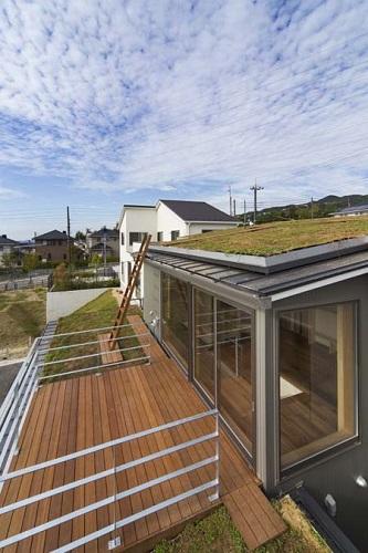 屋根緑化の家