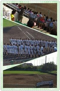 高校野球 大阪予選ベスト32入り 追手門学院高等学校