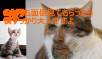 【iphone修理西宮店】修理の保証期間