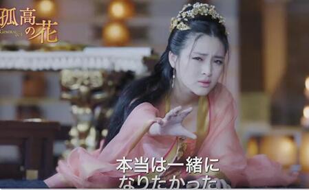 現在、BS12で放送の中国ドラマ「孤高の花 ~General&I~」第49~50話あらすじ!