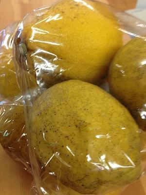 日本のシェア50%、広島県の国産レモンを使って酵素ジュースに!