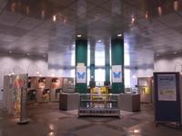 4月11日-5月7日 大阪府立中央図書館にて出張展示「すごいぞ昆虫!」