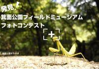 「発見!箕面公園フィールドミュージアムフォトコンテスト」応募受付中!(応募期間7月25日~8月31日)