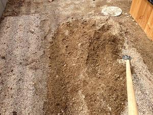 畑部の活動は、まずは土づくりから