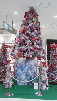 館内もクリスマス一色♪