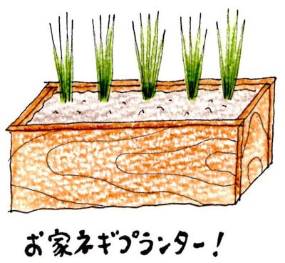 プチ自給生活体験教室!(5/14~15のみ)