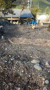 ダンボールコンポスト堆肥を畑へ投入!