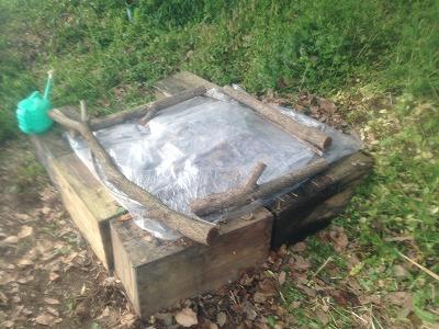 """食器洗浄で使われた""""おがくず""""は堆肥として農場で熟成中"""