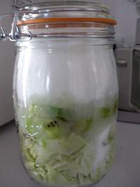私でも出来た♪簡単、酵素ジュースの作り方!