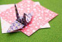 折り紙の中の数字や数式