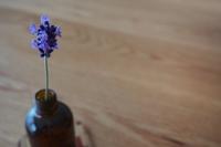【みくまり】7/10(日) 花と話そう - 一輪挿し体験 -