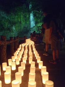 -終了しました- 「サマーフェスタ箕面公園」-夜間ライトアップ&キャンドルロード-