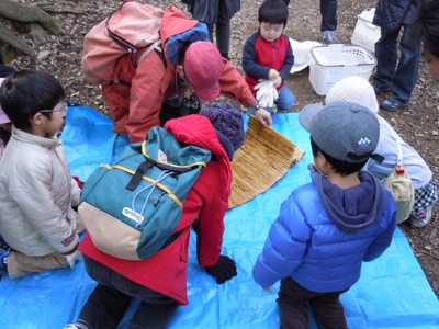 -終了しました- 2月2日 冬越しする虫の観察会 参加者募集中
