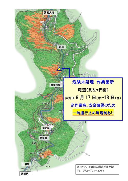 終了しました 9/17・18 滝道沿いで危険木処理