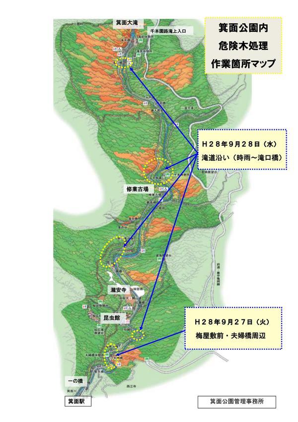 9月27日-28日 滝道沿いにて危険木処理作業をおこないます