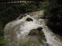 台風は通過しましたが、引きつづき倒木・落ち枝・落石・増水にご注意ください!