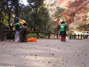 「ひと汗かこう たきみち落葉清掃day」 清掃ボランティア募集!