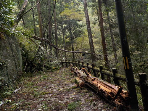 台風21号被害(崩落・多数倒木)により、駅方面から滝へは行けません! ※解除未定