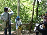 -終了しました- 【自然観察会】5月度-新緑の森を楽しむ観察会-