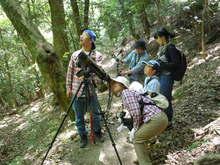 -終了しました- 5月15日自然観察会-新緑の森を楽しもう-