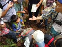 -参加者募集中- 自然観察会6月「梅雨だからあえる生きもの」