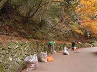 参加者募集中! 12月8日 滝道の落葉清掃0.5dayボランティア