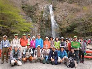 -終了しました- 4月3日『ガイドと行く箕面の山ヤマザクラ探訪ハイキング』