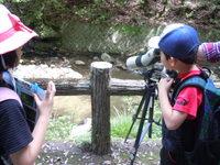 -募集締め切りました- 5月21日 自然観察会5月-新緑の森をたのしもう!-