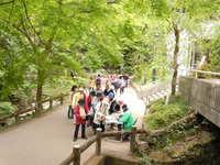 【トピックス】新緑満喫!箕面滝道でウォークラリーイベント開催