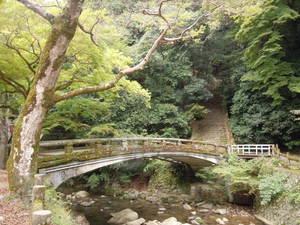 10月12日-21日 園内の橋梁(きょうりょう)点検