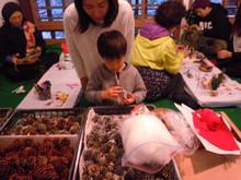-終了しました- 12月10日みのおこうえん自然工作ワークショップ-自然素材でつくるクリスマスかざり-