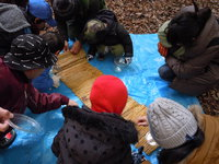 参加者募集中! 2月11日 自然観察会2月-冬越しするいきものをかんさつしよう-