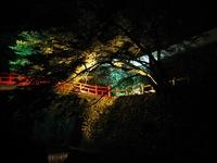 -終了しました- 「デジカメフォトレッスン夜景編 大滝ライトアップを撮ろう!」