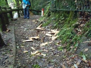 大雨・強風の影響により園内は落ち枝・倒木・落石などが発生しやすい状態となっています