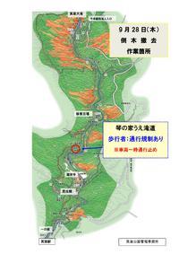 -滝道で通行規制あり- 9月28日(木) 滝道沿いにて倒木の撤去をおこないます