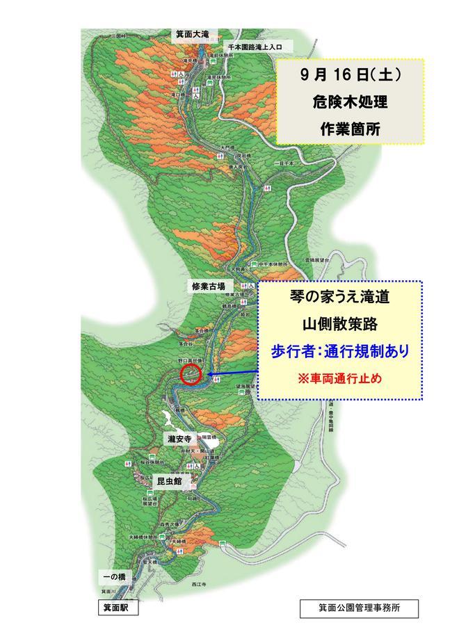 -終了しました- 緊急:9月16日(土) 滝道(琴の家うえ)において危険木処理をおこないます