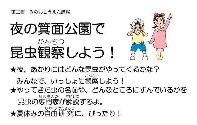 【イベント】8月17日(金) 夜の箕面公園で昆虫観察しよう!