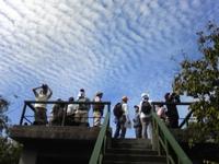 -終了しました- 箕面の自然と遊ぶ会 9月観察会 「鷹渡りと秋の雲」