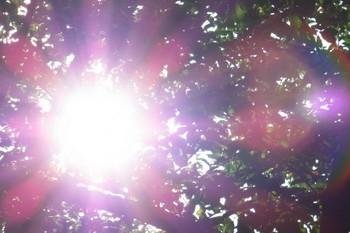 春のスキンケアは保湿と紫外線対策✨